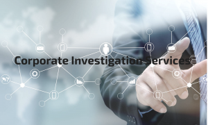 cropped CorporateInvestigationServices2 300x180 - cropped-CorporateInvestigationServices2.png