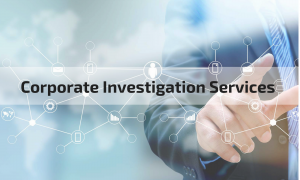 cropped CorporateInvestigationServices3 300x180 - cropped-CorporateInvestigationServices3.png